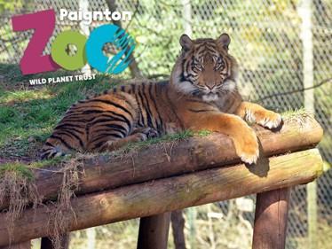 Paignton Zoo