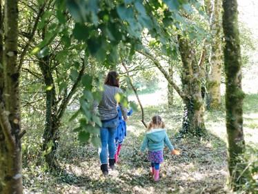 Woodlands & Grounds